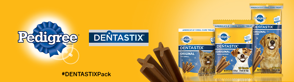 DENTASTIX™ Chatterbox
